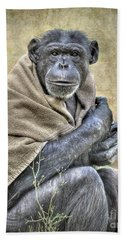 Beach Towel featuring the photograph Chimpanzee by Savannah Gibbs