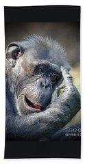 Beach Sheet featuring the photograph Chimpanzee Thinking by Savannah Gibbs