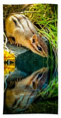 Chipmunk Reflection Beach Towel