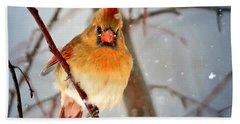 Northern Cardinal Snow Scene Beach Towel by Nava Thompson