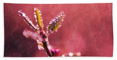 Circles From Nature - C33st04a Beach Towel
