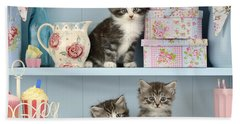Baking Shelf Kittens Beach Towel by Greg Cuddiford