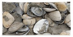 Clam Shell Beach  Beach Sheet by Denise Pohl
