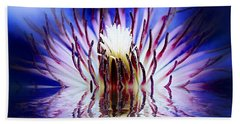 Beach Towel featuring the photograph Clematis Rising by Nick Kloepping