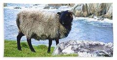 Clew Bay Sheep Beach Sheet