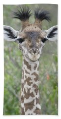Close-up Of A Baby Giraffe Giraffa Beach Towel