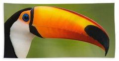 Close-up Of A Toco Toucan Ramphastos Beach Towel