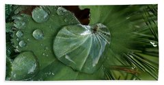 Close-up Of Leaves With Water Droplets Beach Towel