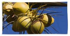 Coconut 1 Beach Sheet by Teresa Zieba