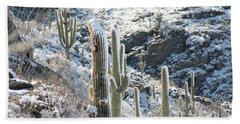 Cold Saguaros Beach Sheet by David S Reynolds