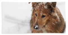 Collie In The Snow Beach Sheet
