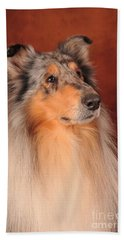 Collie Portrait Beach Towel by Randi Grace Nilsberg