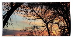 Color Through The Trees Beach Towel