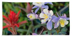 Colorado Blue Columbine Beach Towel