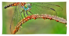 Colorful Dragonfly Beach Sheet by Myrna Bradshaw