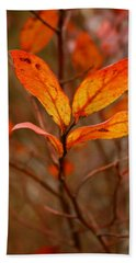 Colorful Leaves Beach Sheet by Karen Harrison