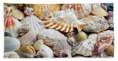 Beach Towel featuring the photograph Colorful Ocean Seashells 1 by Andee Design