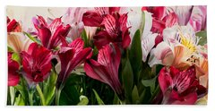 Beach Towel featuring the photograph Colorful Peruvian Lillys by Donna Lee