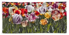 Colorful Tulips In The Sun Beach Towel