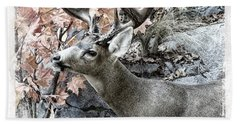 Beach Towel featuring the photograph Columbia Blacktail Deer by Aaron Berg