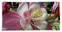 Beach Towel featuring the photograph Columbine by Caryl J Bohn