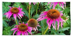 Beach Sheet featuring the photograph Comely Coneflowers by Meghan at FireBonnet Art