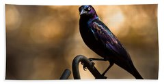 Common Grackle Beach Towel