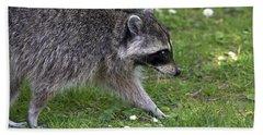 Common Raccoon Beach Towel by Sharon Talson