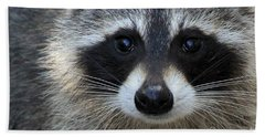 Common Raccoon Beach Towel