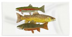 Common Trout  Rainbow Brown And Brook Beach Towel by Thom Glace