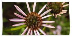 Cone Flower - 1 Beach Towel