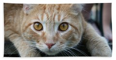 Cool Cat Named Calvin Beach Towel