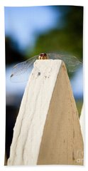 Cool Dude Dragonfly Beach Towel