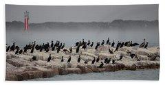 Beach Sheet featuring the photograph Cormorant Island by Debra Martz
