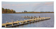Cormorants And Seagulls On Old Dock Near Blackwater  National Wildlife Refuge Near Cambridge Md Beach Towel