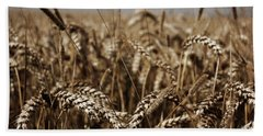 Corn Field Beach Towel by Vicki Spindler