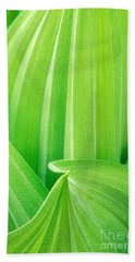 Beach Towel featuring the photograph Corn Lily Leaf Detail Yosemite Np California by Dave Welling