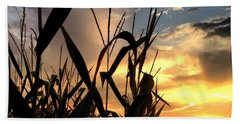 Cornfield Sundown Beach Towel