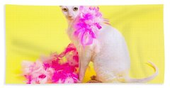 Cornish Rex Beach Towel by Verena Matthew