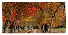 Beach Towel featuring the photograph Country Lane In Autumn by Jerry Gammon