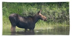 Cow Moose Breakfast Beach Sheet
