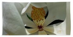 Beach Towel featuring the photograph Coy Magnolia by Caryl J Bohn