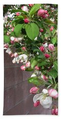 Crabapple Blossoms And Wall Beach Sheet