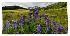 Beach Towel featuring the photograph Crested Butte Lupines by Ronda Kimbrow