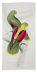 Crimson Winged Parakeet Beach Sheet by Edward Lear