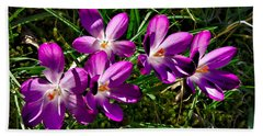 Crocus In The Grass Beach Towel