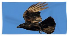 Beach Sheet featuring the photograph Crow In Flight by Meg Rousher