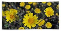 Beach Towel featuring the photograph Crown Daisies by George Atsametakis
