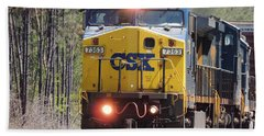 Csx 7363 Beach Towel by Kim Pate
