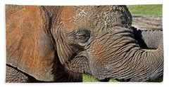 Cuddles Beach Towel by Miroslava Jurcik